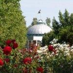 Пансионат райский уголок в бердянске