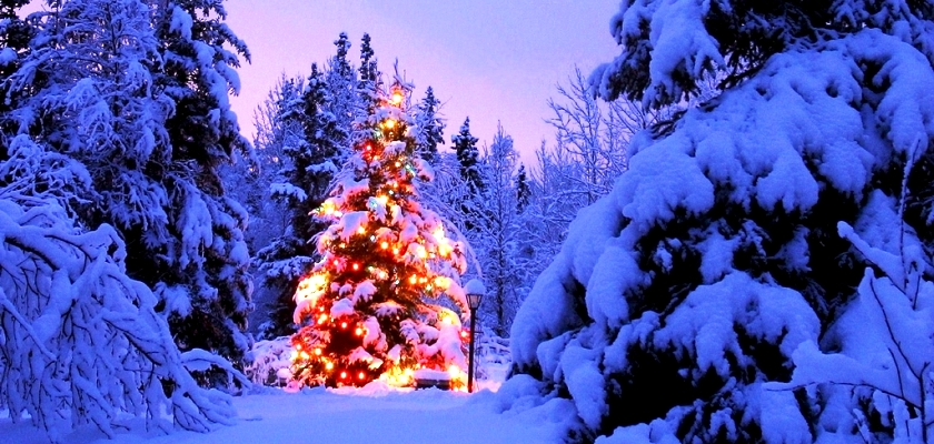 Новый год 2019 в Белоруссии лучший отдых, Рождество 2019 в Белоруссии лучший отдых раннее бронирование, Новый год 2019 в Беларуси лучший отдых, Рождество 2019 в Беларуси лучший отдых
